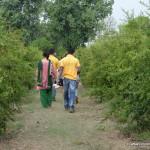 village stay at Govindnagar
