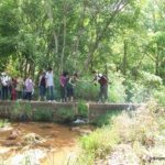 Trekking and Camping in Pachmarhi