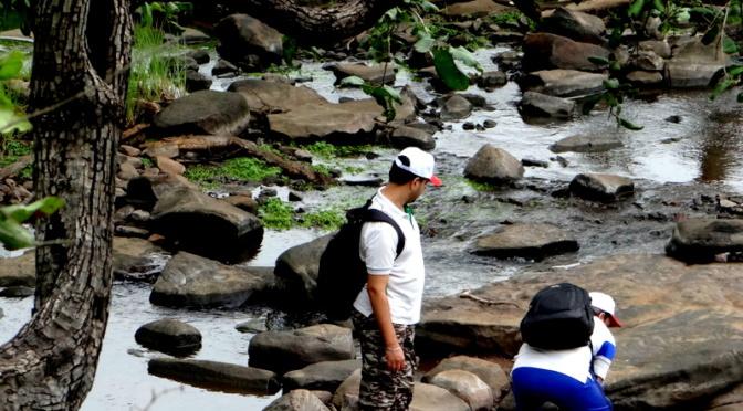 A Monsoon Trek through the Jungle Trail
